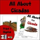 Cicada Book Print and Digital | Decodable & Emergent Reader