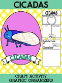 Cicadas - Writing Craft and Graphic Organizers SET, Book Template, Insects