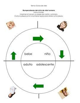 Ciclo de Vida/Life Cylce Thematic Unit Bundle