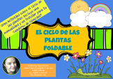 Ciclo de las Plantas! Foldable! CRAFTIVITY!