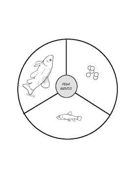 Ciclo de vida del pez