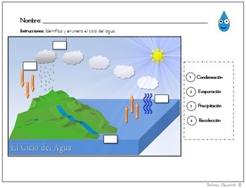 Ciclo del agua | Water Cycle (Spanish)