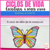 Ciclos de vida - Life cycles in Spanish DIGITAL & PRINT