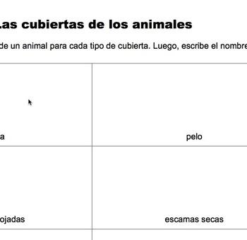 """Ciencias: Animales: Dibujar y nombrar: """"Las cubiertas de los animales"""""""