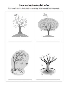 Ciencias: Las estaciones del ano: Dibujar y nombrar
