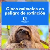 Cinco animales en peligro de extinción - Endangered specie