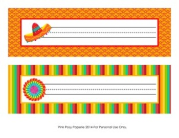 Cinco de Mayo Fiesta Classroom Decor Desk Name Plates