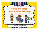Cinco de Mayo Language Vocabulary Bundle Preview