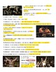 Cinderella Man Movie Guide & Answer Key