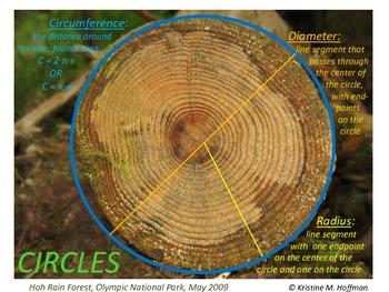 """""""Circle"""" at Olympic National Park (Math Poster)"""