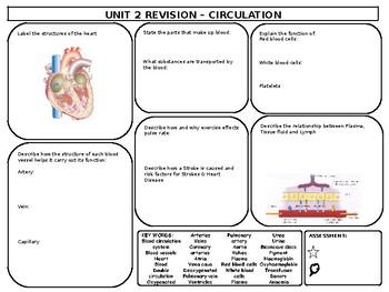 Circulation Revision Mat