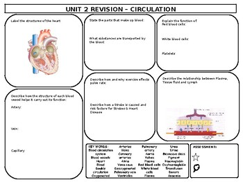 Circulation Revision Mat