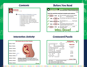 Circulatory, Digestive & Reproductive Systems - PC Gr. 3-8