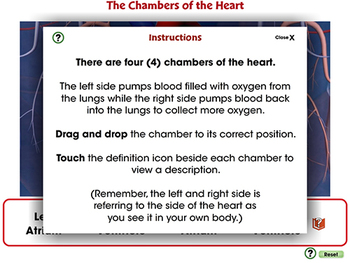 Circulatory,Digestive,Reproductive Systems: The Chambers of the Heart MAC Gr.3-8
