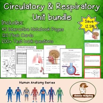 Circulatory & Respiratory Systems Unit Bundle