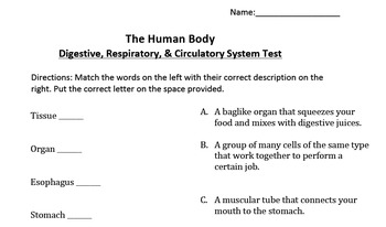 Circulatory, Respiratory, and Digestive System Test
