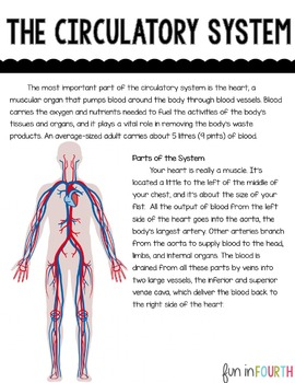 Circulatory System Informational Article and Clicker Book