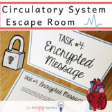 Circulatory System Activity:  Human Anatomy Escape Room