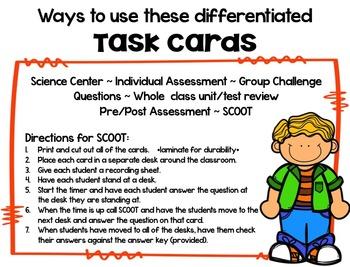 Circulatory System Brain Booster Task Cards