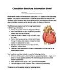 Circulatory System Brochure