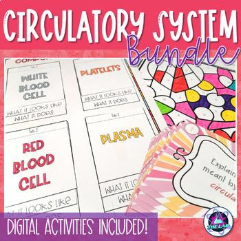 Circulatory System Bundle
