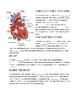 Circulatory System -- CLOZE Reading