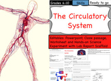 Circulatory System & the Heart Powerpoint, Worksheets & He