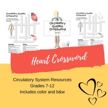 Circulatory System Crossword