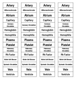 Circulatory System Cut-n-Paste Vocabulary
