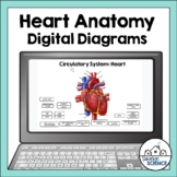 Circulatory System Diagrams for Distance Learning