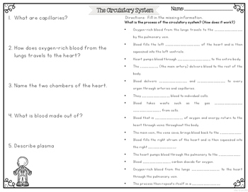 Circulatory System Differentiated Nonfiction Reading Passages