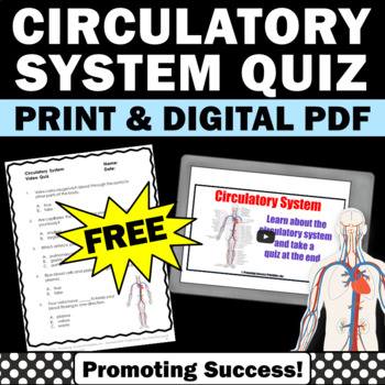 FREE Circulatory System Worksheet, Human Body Systems Grade 5 Activity