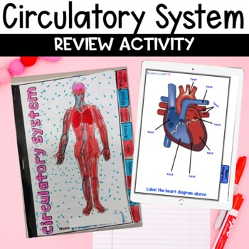 Circulatory System Google Classroom Flip Book Review Activity