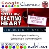 Circulatory System Google Drive Interactive Notebook