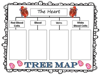 tree map graphic organizer pdf