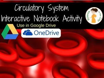 Circulatory System Digital Resource