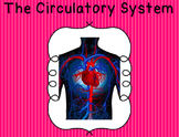 Circulatory System Keynote PPT