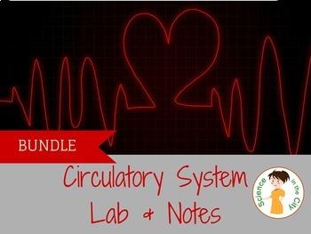 Circulatory System Pack