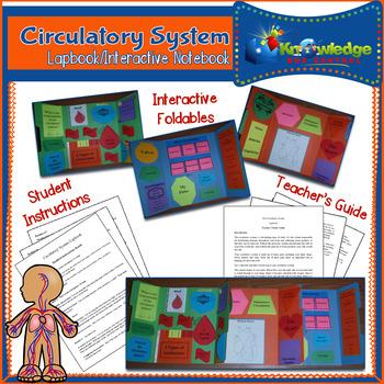 Circulatory System Lapbook
