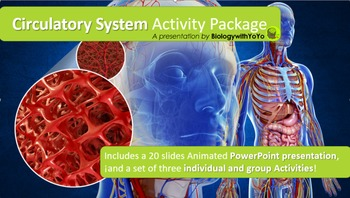 Circulatory System Lesson- PowerPoint Presentation Activity Package