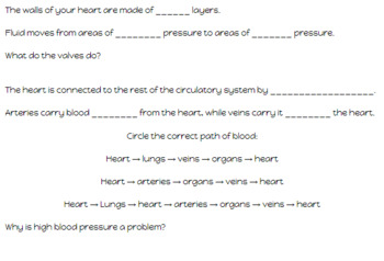 Circulatory System Lesson and Activity