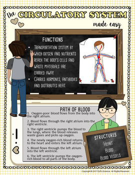 Circulatory System Made Easy
