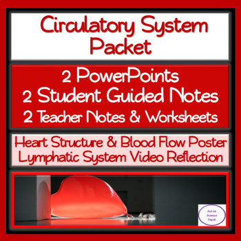 Circulatory System Packet: 2 PowerPoints, 2 Student Notes, 2 Worksheets,Activity