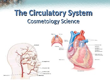 Circulatory System PowerPoint Notes - Cosmetology Science