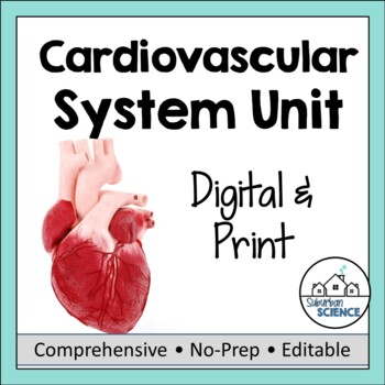 Circulatory System- PowerPoint, Notes, Diagrams, & Lab Activity