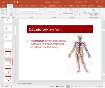 Circulatory System - PowerPoint Presentation