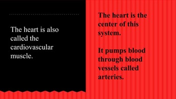 Circulatory System Presentation and Notes