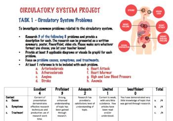 Circulatory System Project (Editable)