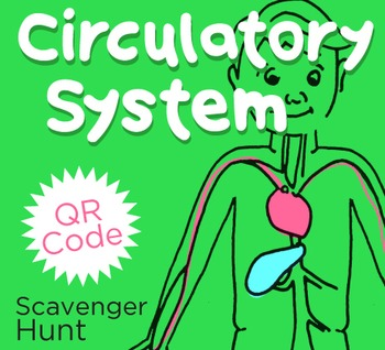 Circulatory System QR Code Scavenger Hunt