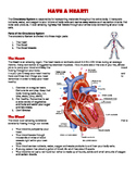 Circulatory System Reading, Writing and Art Activity